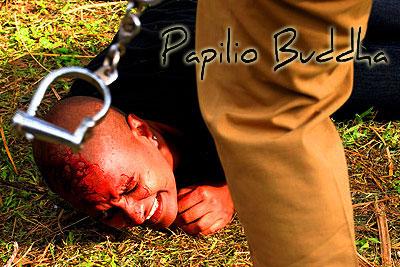 papilio-buddha-epathram