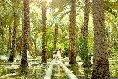 al-ain-oasis-world-heritage-site-ePathram