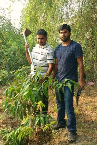 birth-day-tree-faizal-bava-jasir-eramangalam-ePathram