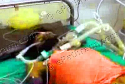 swami-nigamanand-in-icu-epathram