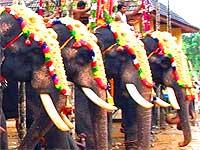 thrikkakara-temple-festival-epathram