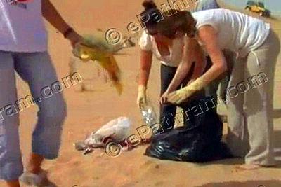 desert-cleanup-epathram