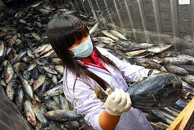 radioactive-fish-epathram