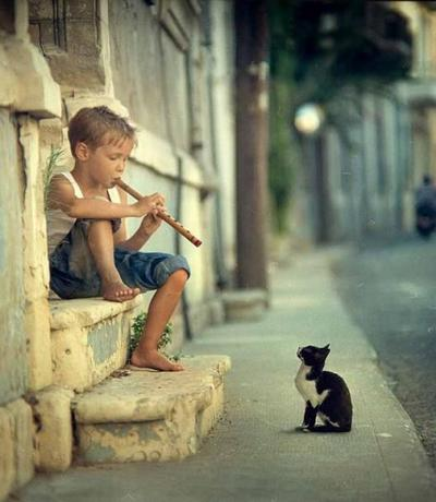 boy and cat-epathram