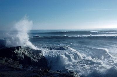 oceans-day-epathram