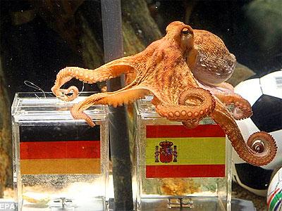 paul-octopus-epathram